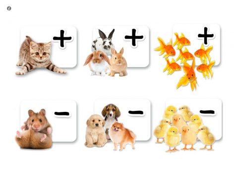 zoola-kids-math